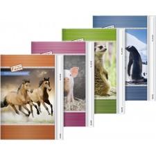 AufgabenheftA5 Tiere
