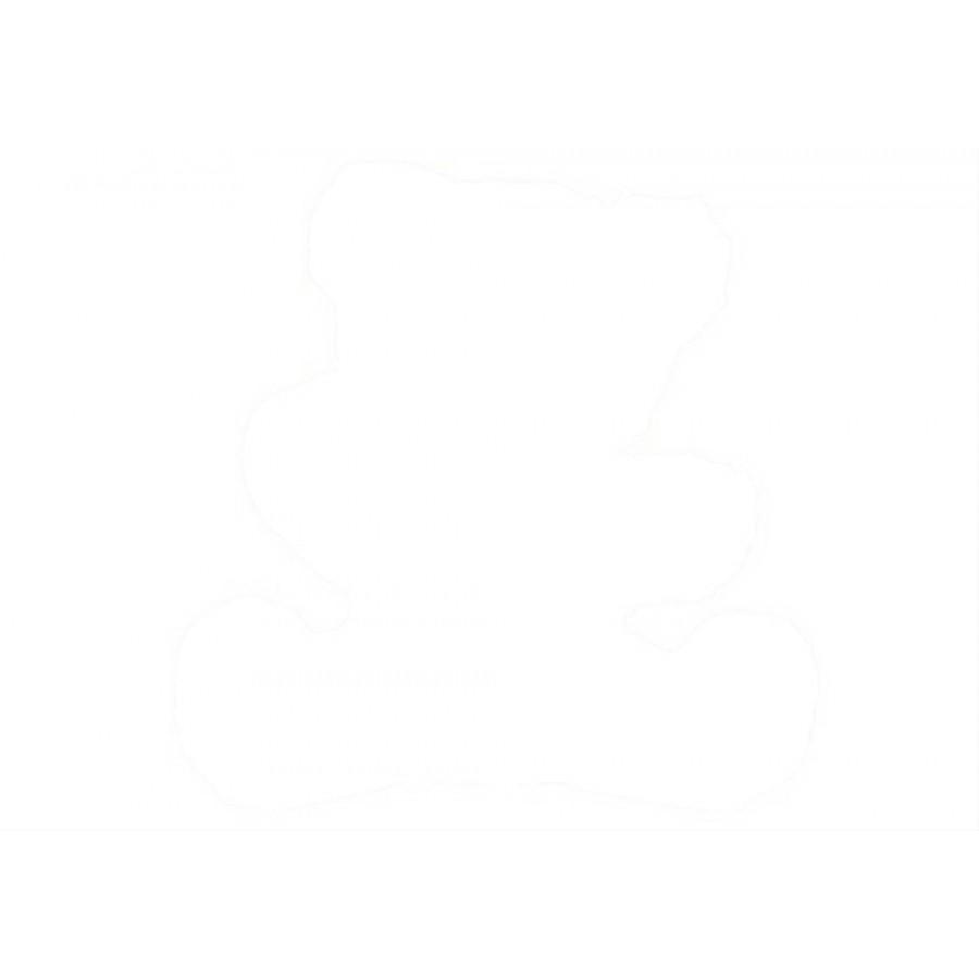 Scheibenbär mit Brummstimme, ca. 32 cm