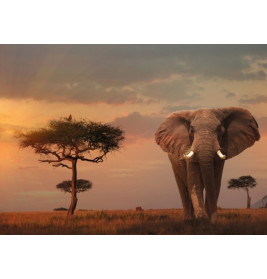 Ravensburger 151592 Puzzle: Elefant in Masai Mara Nationalpark, 1000 Teile