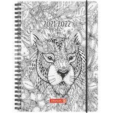 SchülerkalenderA5, ZENArt